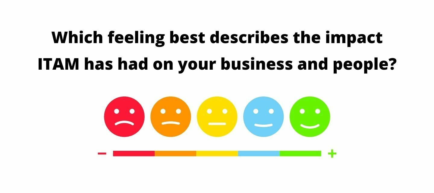 Which feeling best describes the impact IT Asset Management has had on you, your business/ organization and team?