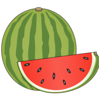 WatermelonDrink