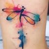 Mimi3_dragonfly