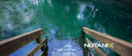 Come Take a Dive into SAP Landscapes Running on Nutanix at SAP Sapphire NOW