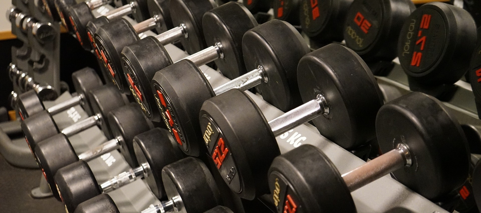 Weight Training Roundup: A Review of Programs and Features
