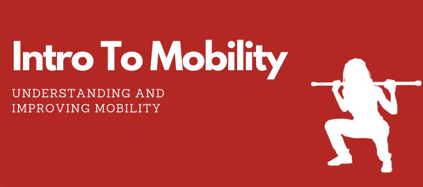 Understanding & Improving Mobility
