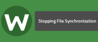 Stopping File Synchronization