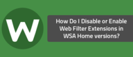 How Do I Disable or Enable Web Filter Extensions in WSA Home versions?
